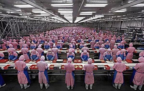 foxconn fábrica trabalhadores
