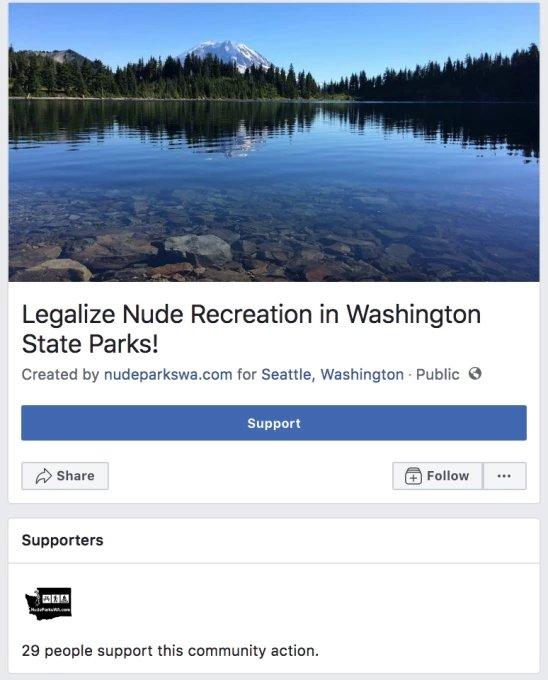 falsa petição