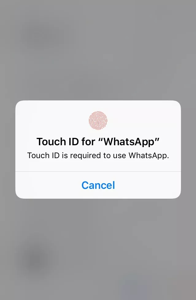touchid whatsapp
