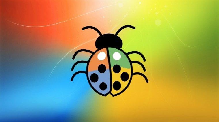 Windows com bug
