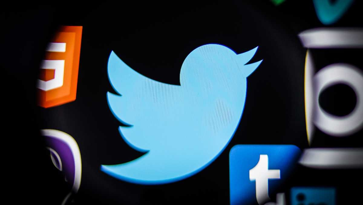 twitter logo e pássaro azul