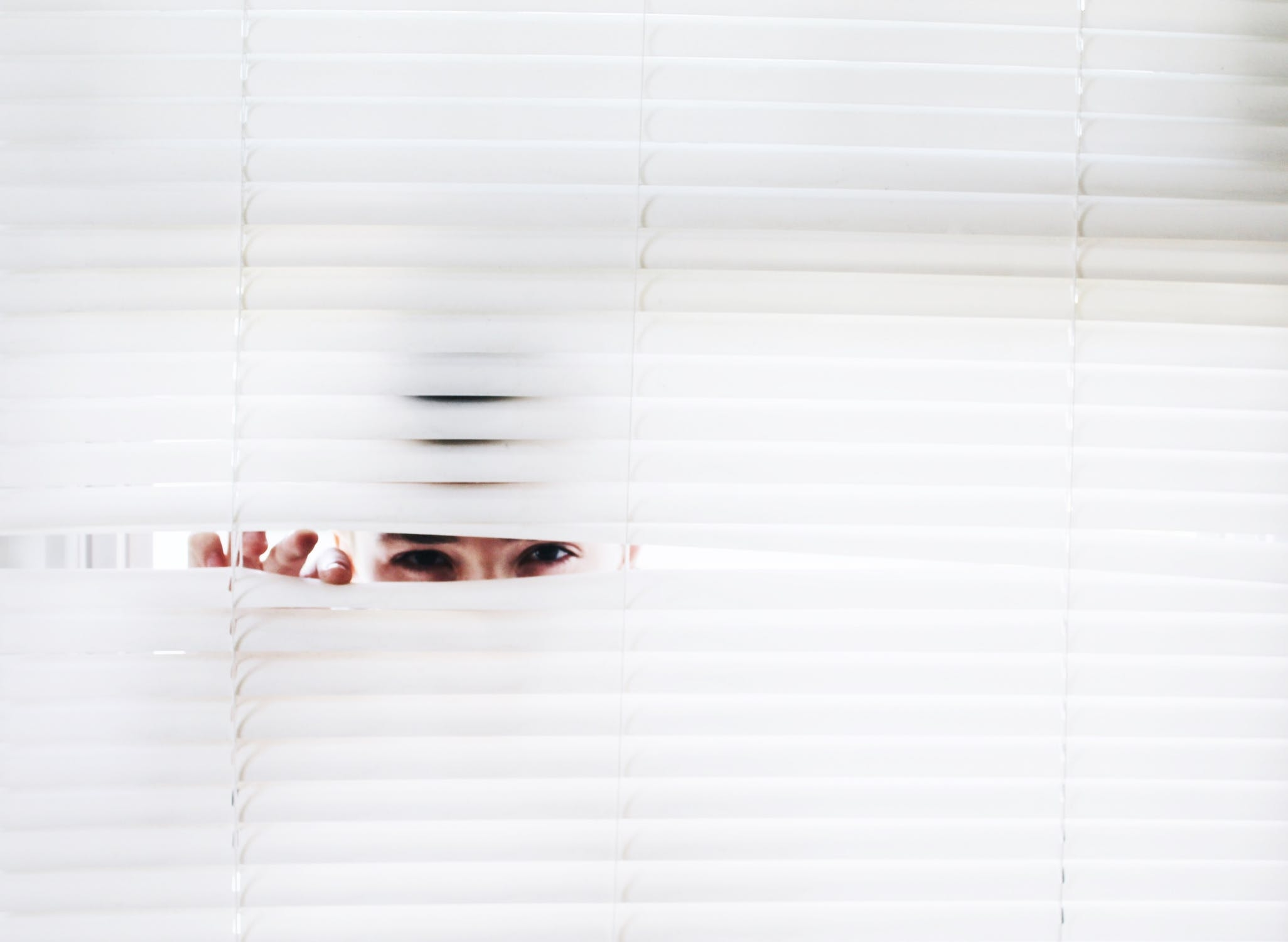 spy janela