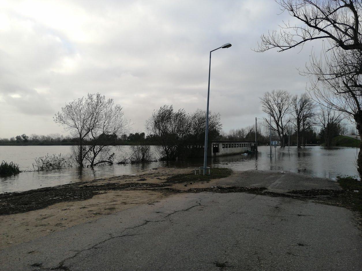 Cheias rio mondego