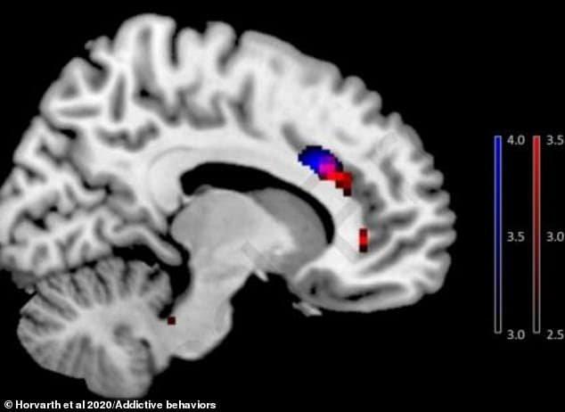 cérebro de dependente em smartphones