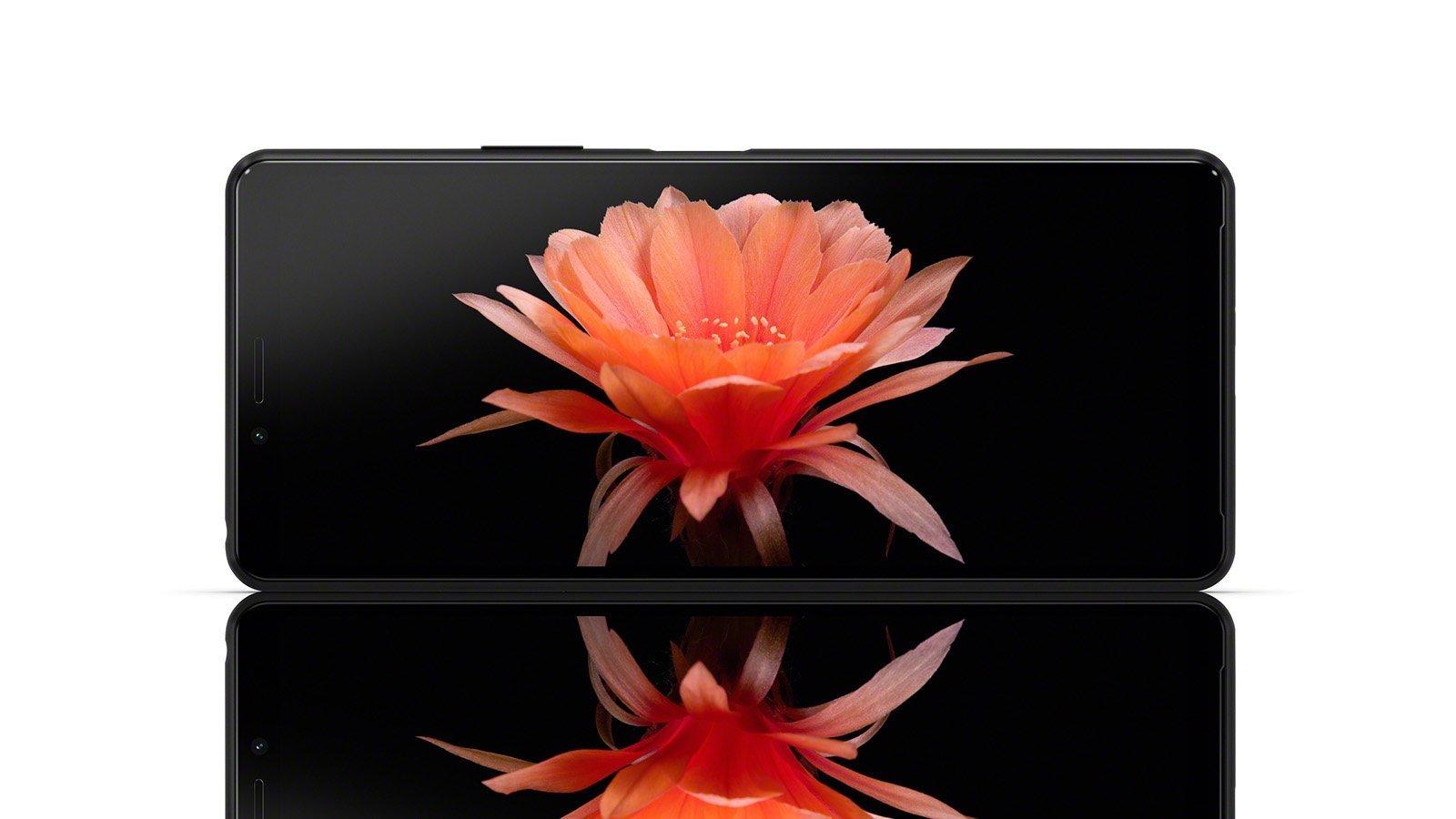 smartphone sony xperia 10 II