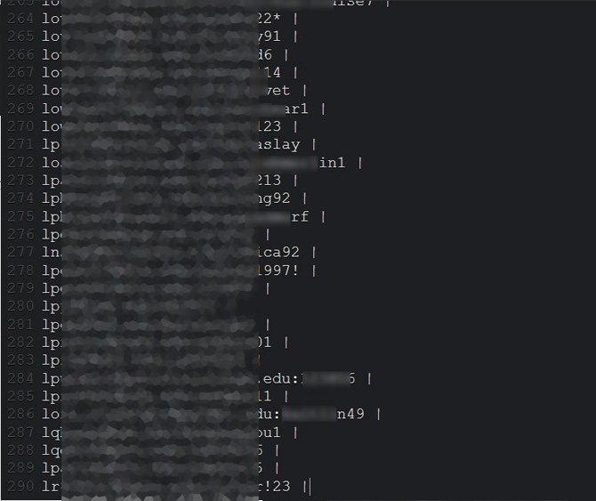 exemplo de contas zoom roubadas