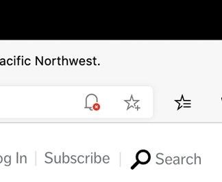 ícone notificações sites