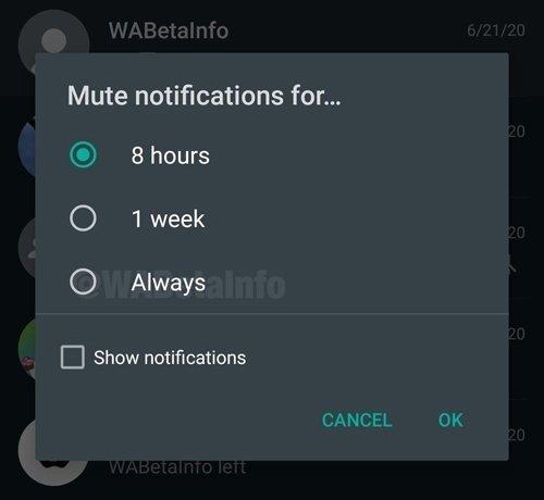 opções WhatsApp silenciar notificações
