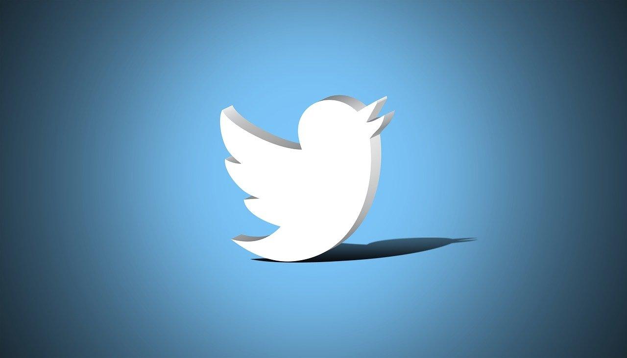 Twitter passaro