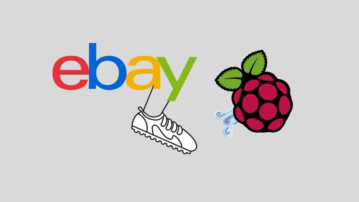 ebay bane Raspberry Pi