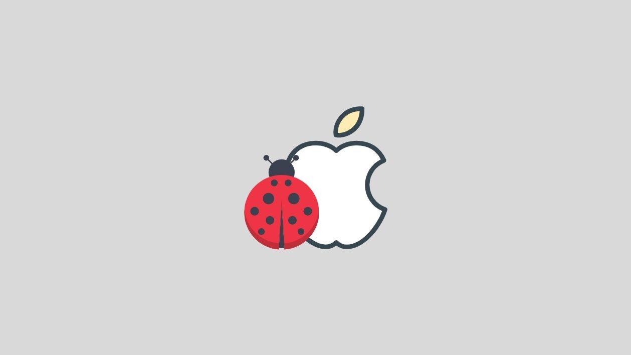 iOS apple bug