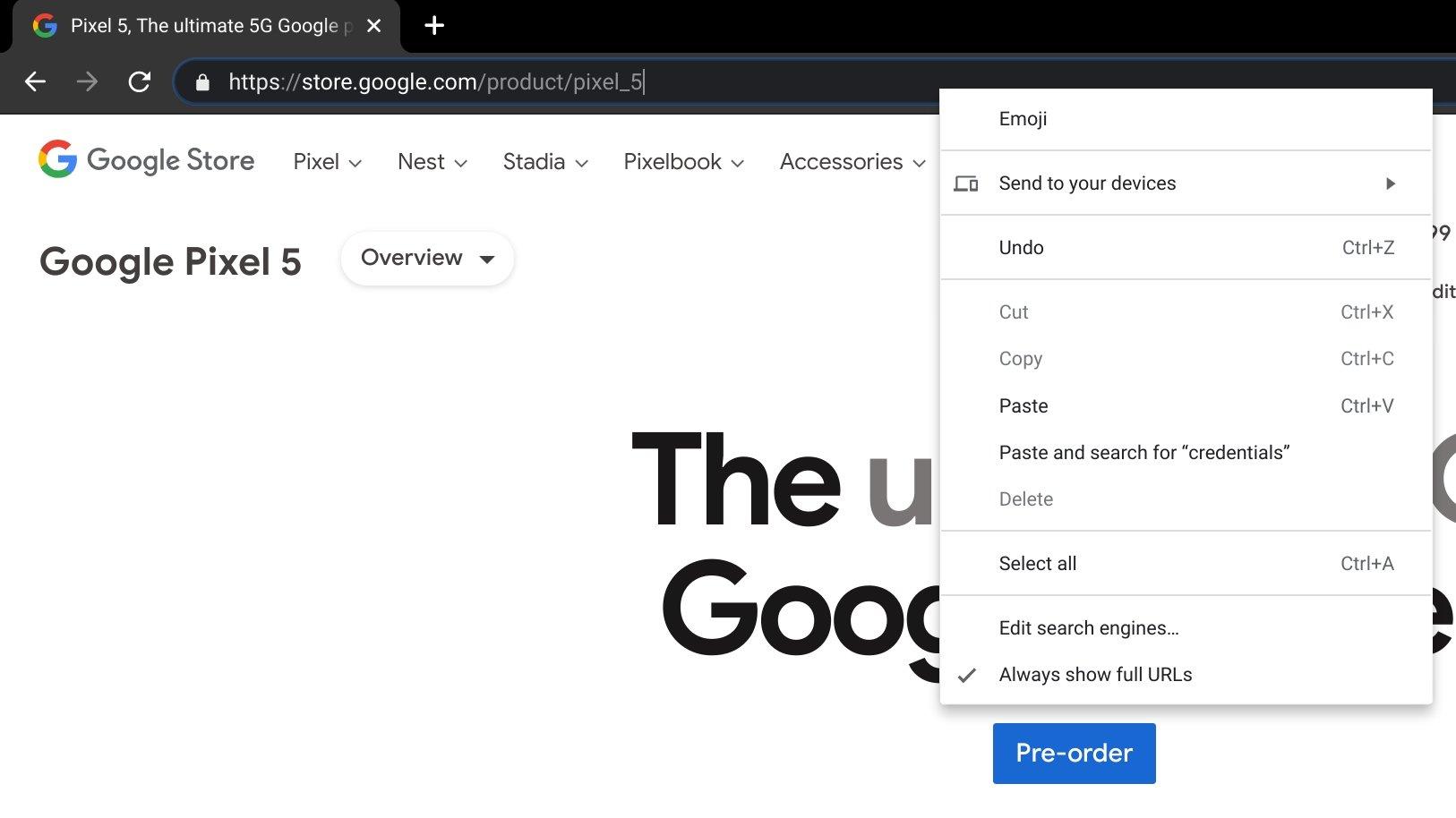 novo endereço do navegador