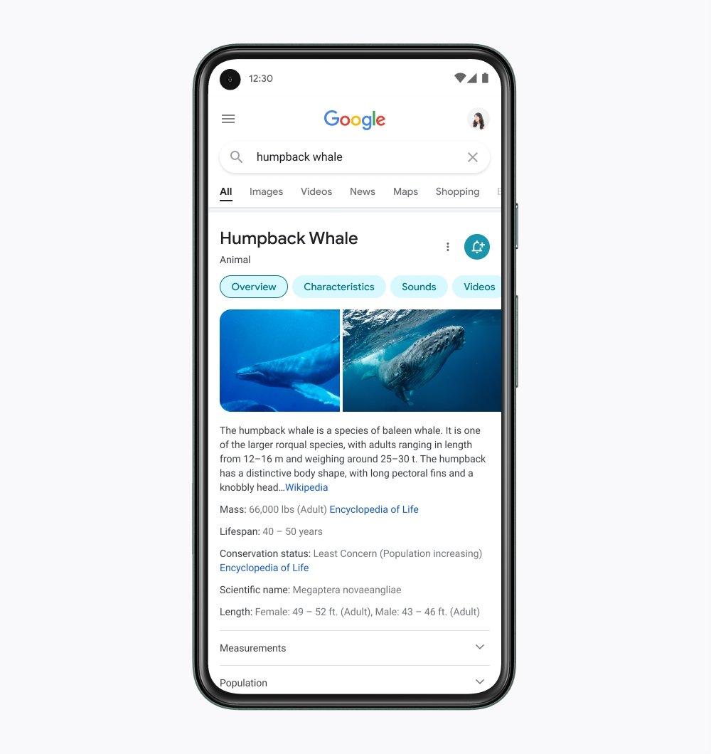 nova pesquisa da google em smartphoness