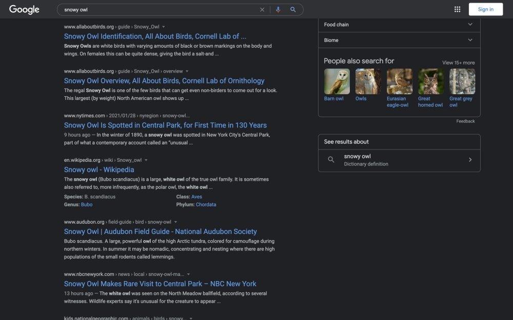 pesquisa da google modo escuro