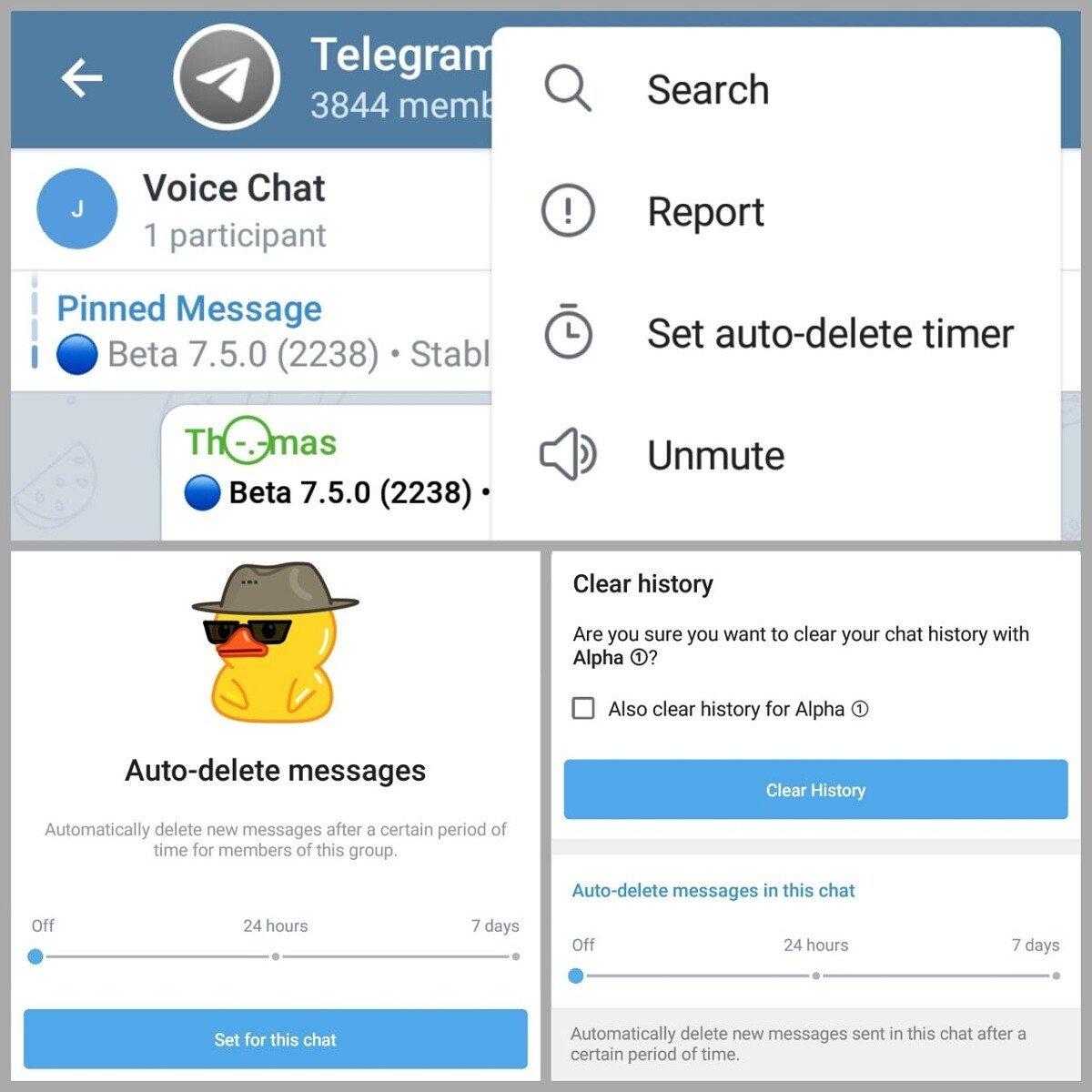 mensagens eliminadas automaticamente telegram grupos