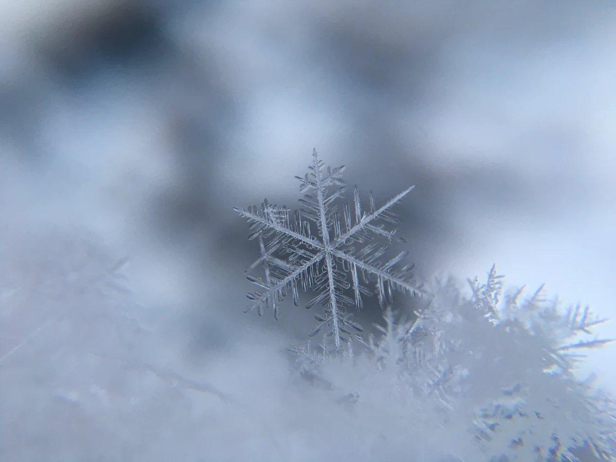 Neve no solo