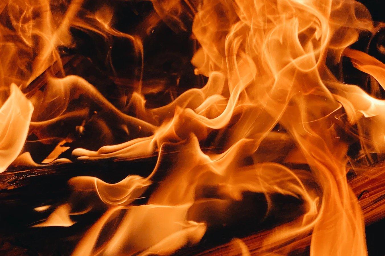 fogo vivo