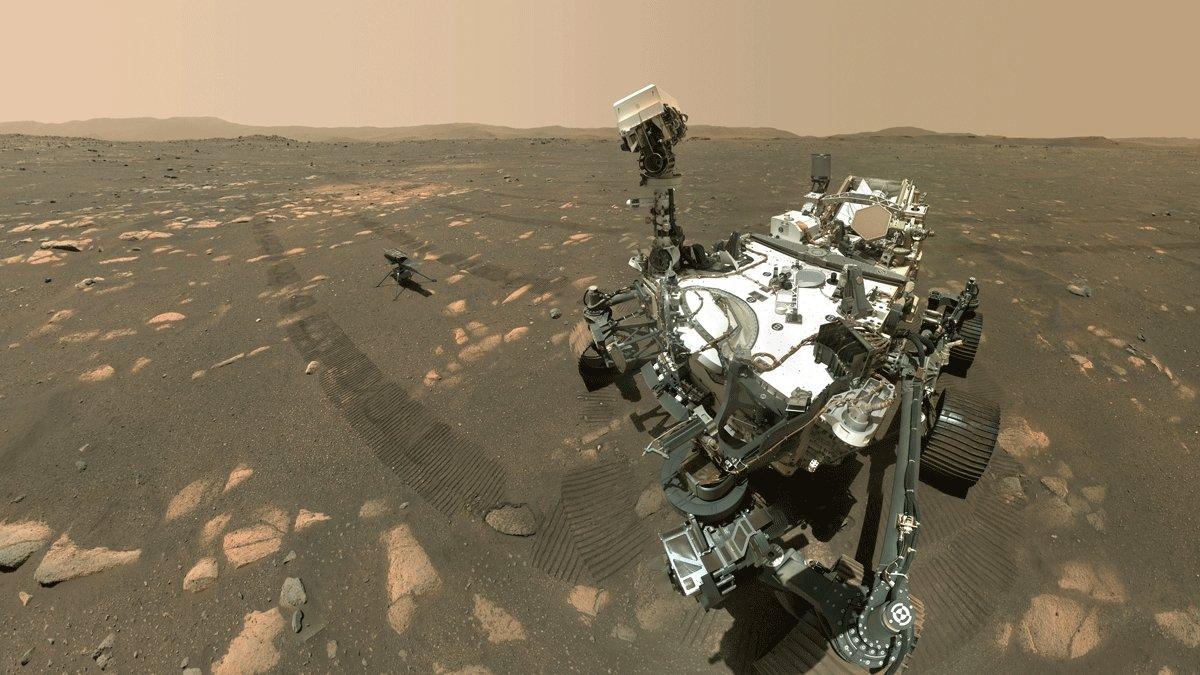 selfie rover perserverance