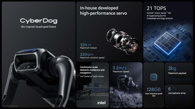 detalhes do cyberdog