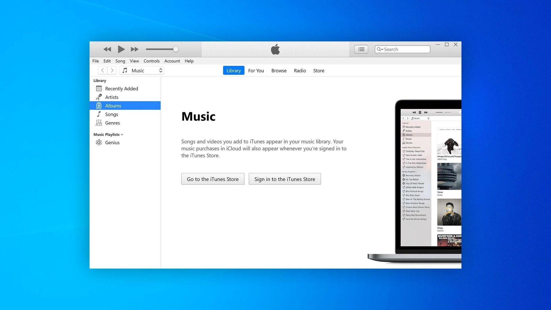 Apple iTunes windows